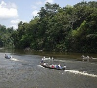 Amazon+expeditumu WWF Mines The Green Gold Rush To The Amazon:  Making $60 billion From Fear