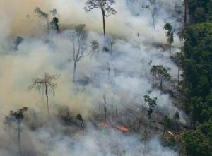 Amazon+smoke WWF Mines The Green Gold Rush To The Amazon: Making  $60 billion From Fear